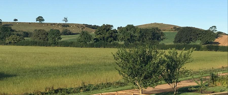 Eastwood-farm-shennington-view